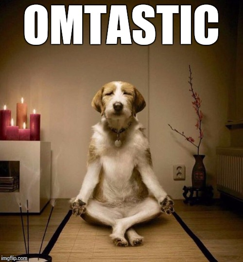 yoga dig | OMTASTIC | image tagged in yoga dig | made w/ Imgflip meme maker