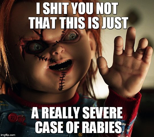 I SHIT YOU NOT THAT THIS IS JUST A REALLY SEVERE CASE OF RABIES | image tagged in horror movie,animals,disease,redheads,dolls | made w/ Imgflip meme maker