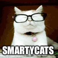 SMARTYCATS | made w/ Imgflip meme maker