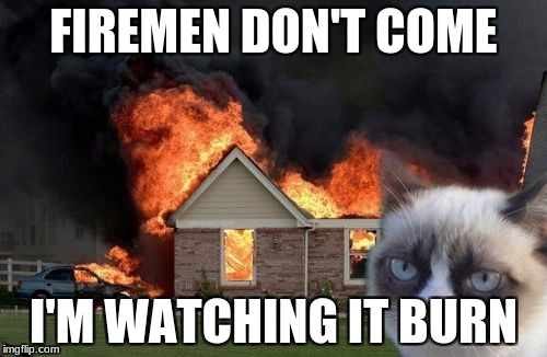 Burn Kitty Meme | FIREMEN DON'T COME I'M WATCHING IT BURN | image tagged in memes,burn kitty,grumpy cat | made w/ Imgflip meme maker