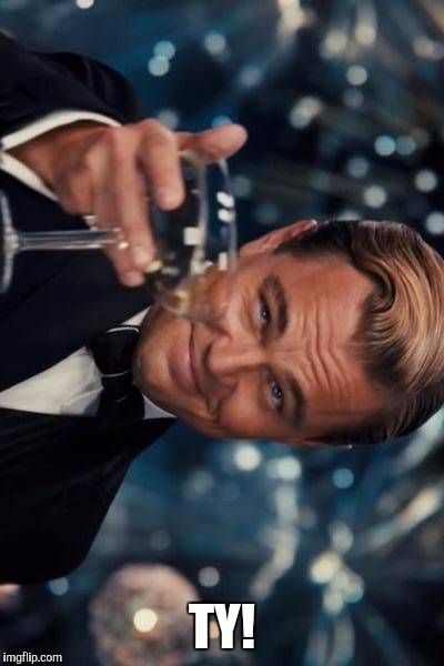 Leonardo Dicaprio Cheers Meme | TY! | image tagged in memes,leonardo dicaprio cheers | made w/ Imgflip meme maker