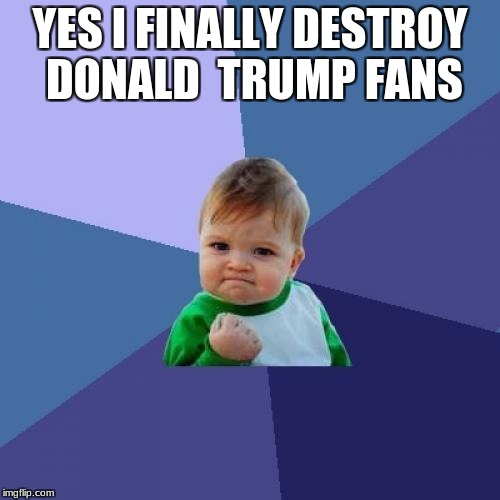 Success Kid Meme | YES I FINALLY DESTROY DONALD  TRUMP FANS | image tagged in memes,success kid | made w/ Imgflip meme maker