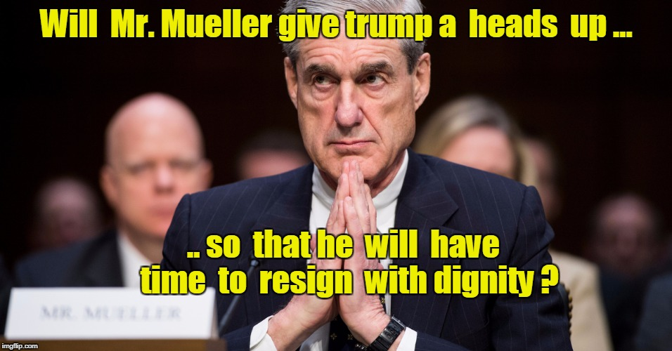 Will  Mr. Mueller give trump a  heads  up ... .. so  that he  will  have  time  to  resign  with dignity ? | image tagged in mueller,trump resign | made w/ Imgflip meme maker