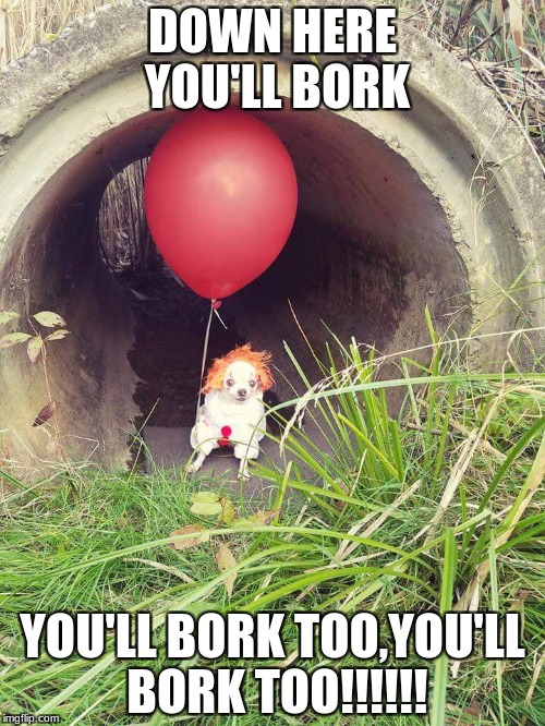 DOWN HERE YOU'LL BORK YOU'LL BORK TOO,YOU'LL BORK TOO!!!!!! | image tagged in doggo it | made w/ Imgflip meme maker