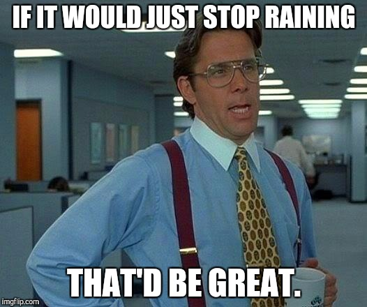 Rain rain go away | IF IT WOULD JUST STOP RAINING THAT'D BE GREAT. | image tagged in memes,that would be great,rain,weather,fall,wet | made w/ Imgflip meme maker