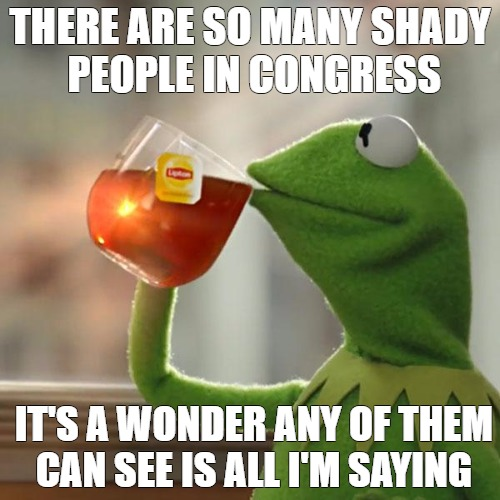 need brightness  | THERE ARE SO MANY SHADY PEOPLE IN CONGRESS IT'S A WONDER ANY OF THEM CAN SEE IS ALL I'M SAYING | image tagged in memes,but thats none of my business,kermit the frog | made w/ Imgflip meme maker