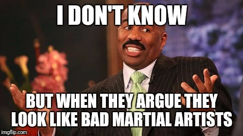 Steve Harvey Meme | I DON'T KNOW BUT WHEN THEY ARGUE THEY LOOK LIKE BAD MARTIAL ARTISTS | image tagged in memes,steve harvey | made w/ Imgflip meme maker
