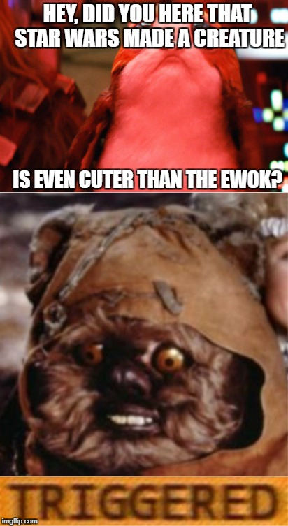 When The Last Jedi comes in to town and takes your popularity away from you. |  HEY, DID YOU HERE THAT STAR WARS MADE A CREATURE; IS EVEN CUTER THAN THE EWOK? | image tagged in star wars,ewok,triggered,the last jedi,return of the jedi,porg | made w/ Imgflip meme maker