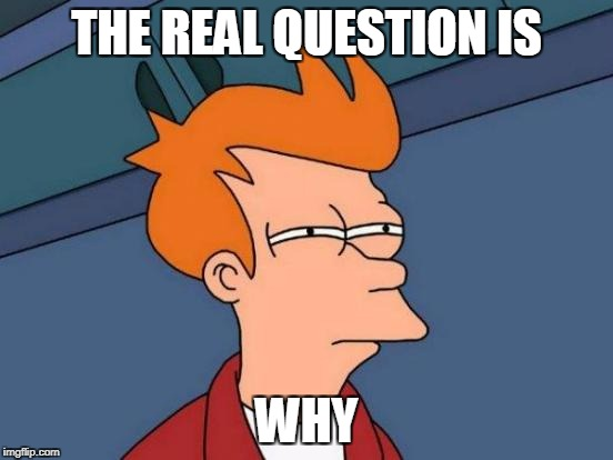 Futurama Fry Meme | THE REAL QUESTION IS WHY | image tagged in memes,futurama fry | made w/ Imgflip meme maker