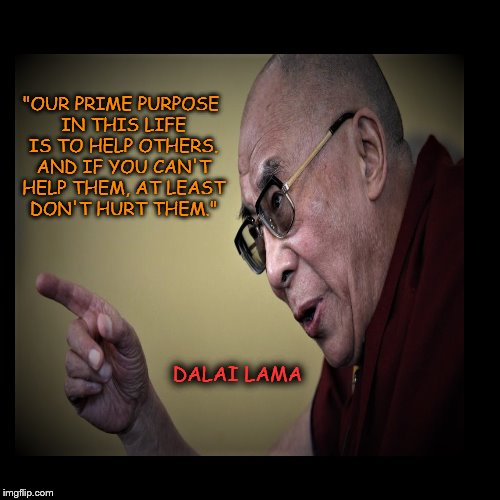 "DALAI LAMA ""OUR PRIME PURPOSE IN THIS LIFE IS TO HELP OTHERS. AND IF YOU CAN'T HELP THEM, AT LEAST DON'T HURT THEM."" 