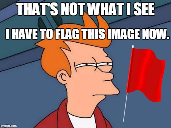 Futurama Fry Meme | THAT'S NOT WHAT I SEE I HAVE TO FLAG THIS IMAGE NOW. | image tagged in memes,futurama fry | made w/ Imgflip meme maker