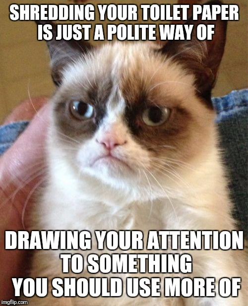 Grumpy Cat Meme | SHREDDING YOUR TOILET PAPER IS JUST A POLITE WAY OF DRAWING YOUR ATTENTION TO SOMETHING YOU SHOULD USE MORE OF | image tagged in memes,grumpy cat | made w/ Imgflip meme maker