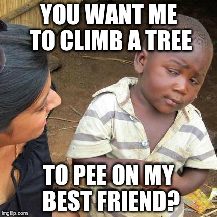 Third World Skeptical Kid Meme | YOU WANT ME TO CLIMB A TREE TO PEE ON MY BEST FRIEND? | image tagged in memes,third world skeptical kid | made w/ Imgflip meme maker