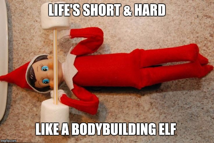 LIFE'S SHORT & HARD LIKE A BODYBUILDING ELF | image tagged in elf | made w/ Imgflip meme maker