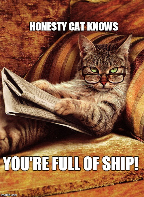 HONESTY CAT KNOWS YOU'RE FULL OF SHIP! | made w/ Imgflip meme maker