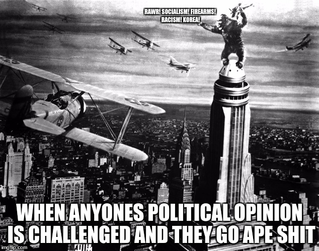 my opinion is- RAWRRRRRRRRRRR | RAWR! SOCIALISM! FIREARMS! RACISM! KOREA! WHEN ANYONES POLITICAL OPINION IS CHALLENGED AND THEY GO APE SHIT | image tagged in king kong,memes,politics,funny | made w/ Imgflip meme maker