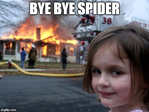 Disaster Girl Meme | BYE BYE SPIDER | image tagged in memes,disaster girl | made w/ Imgflip meme maker