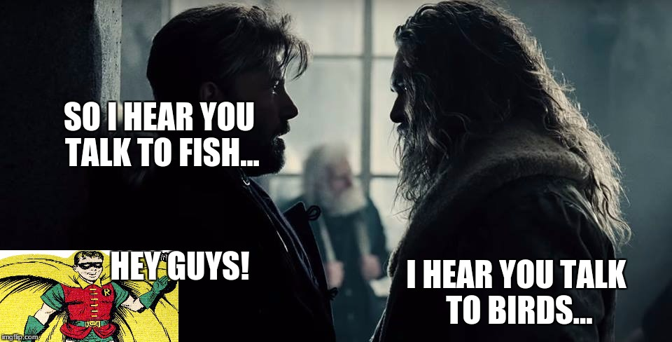 Ohhhh The come backs! | SO I HEAR YOU TALK TO FISH... I HEAR YOU TALK TO BIRDS... HEY GUYS! | image tagged in batman-aquaman,memes,aquaman,batman,justice league,robin | made w/ Imgflip meme maker