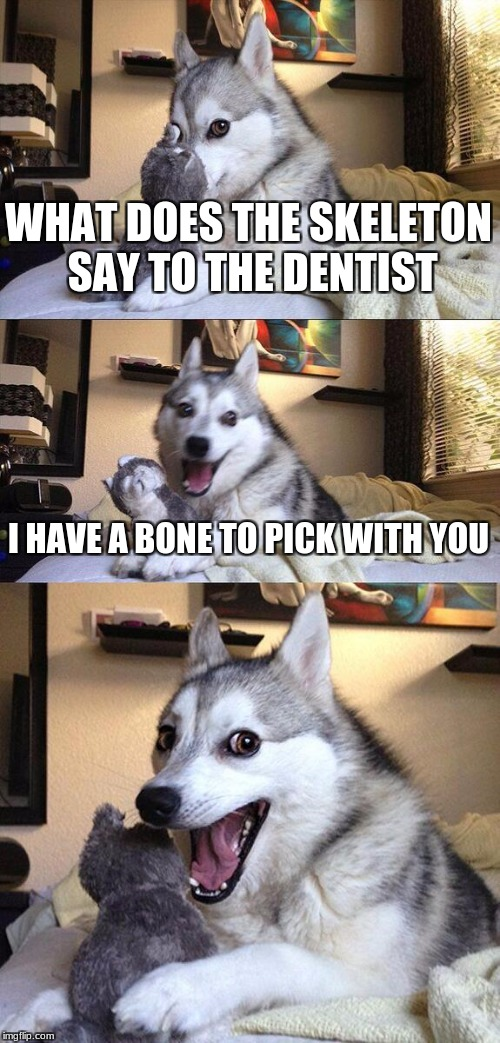 Bad Pun Dog Meme | WHAT DOES THE SKELETON SAY TO THE DENTIST I HAVE A BONE TO PICK WITH YOU | image tagged in memes,bad pun dog | made w/ Imgflip meme maker
