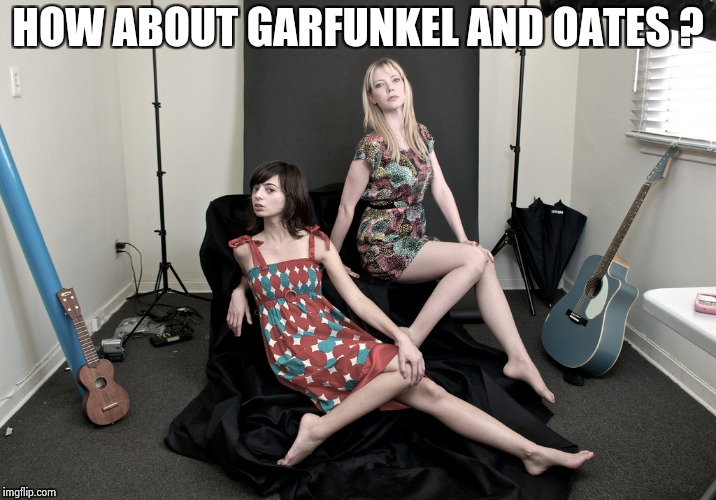 HOW ABOUT GARFUNKEL AND OATES ? | image tagged in garfunkel and oates | made w/ Imgflip meme maker