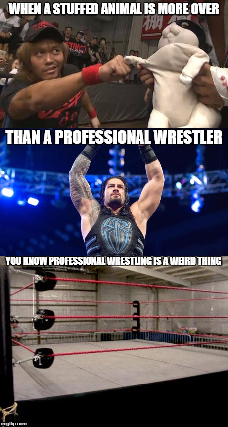 wrestling is weird |  WHEN A STUFFED ANIMAL IS MORE OVER; THAN A PROFESSIONAL WRESTLER; YOU KNOW PROFESSIONAL WRESTLING IS A WEIRD THING | image tagged in stufffed animal,darryl tanahashi,roman reigns,professional wrestling,wwe,njpw | made w/ Imgflip meme maker