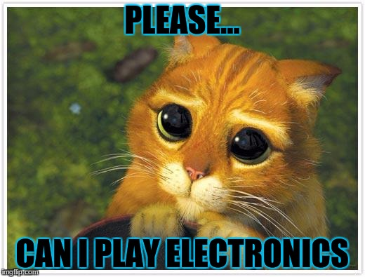Shrek Cat | PLEASE... CAN I PLAY ELECTRONICS | image tagged in memes,shrek cat | made w/ Imgflip meme maker