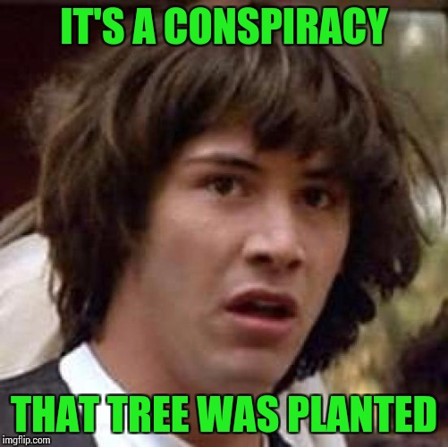 Conspiracy Keanu Meme | IT'S A CONSPIRACY THAT TREE WAS PLANTED | image tagged in memes,conspiracy keanu | made w/ Imgflip meme maker