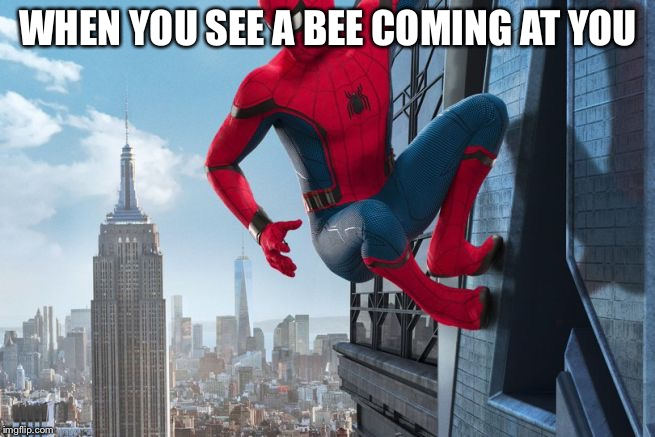 WHEN YOU SEE A BEE COMING AT YOU | image tagged in spider man avenger | made w/ Imgflip meme maker