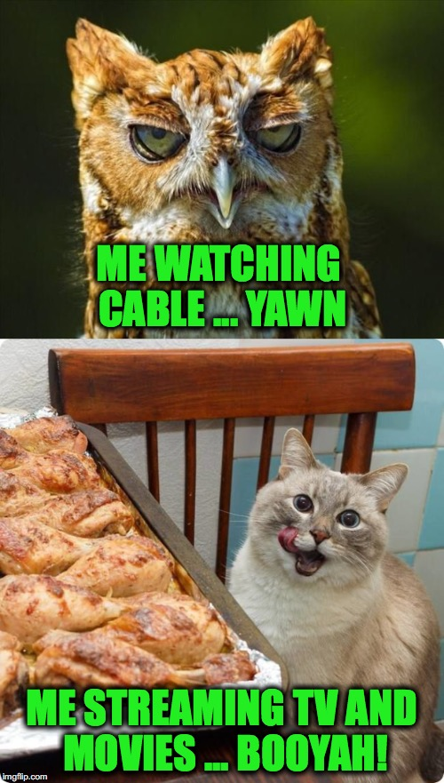 *The* Solution to Annoying Christmas Commercials on The Tube | ME WATCHING CABLE ... YAWN ME STREAMING TV AND MOVIES ... BOOYAH! | image tagged in pain vs pleasure - | made w/ Imgflip meme maker