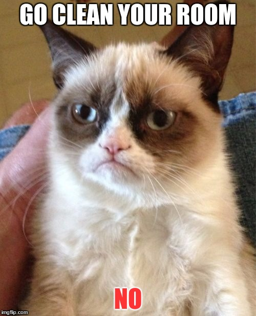 Grumpy Cat Meme | GO CLEAN YOUR ROOM NO | image tagged in memes,grumpy cat | made w/ Imgflip meme maker