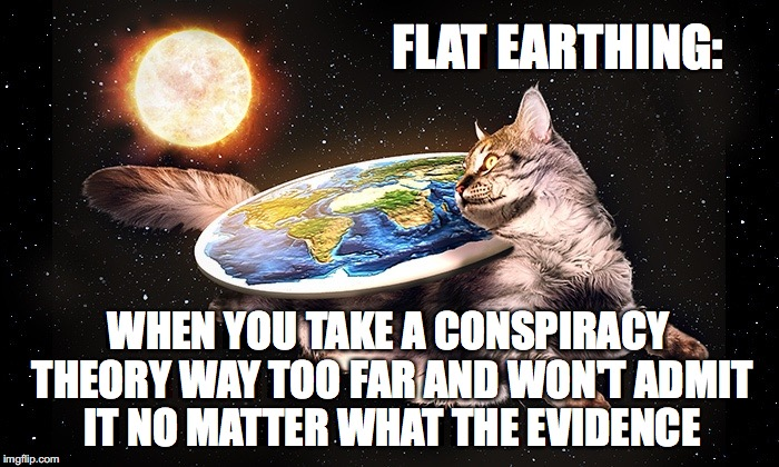 Flat Earthing | FLAT EARTHING: WHEN YOU TAKE A CONSPIRACY THEORY WAY TOO FAR AND WON'T ADMIT IT NO MATTER WHAT THE EVIDENCE | image tagged in flat earth,cat,conspiracy theory,evidence,cognitive dissonance,confirmation bais | made w/ Imgflip meme maker