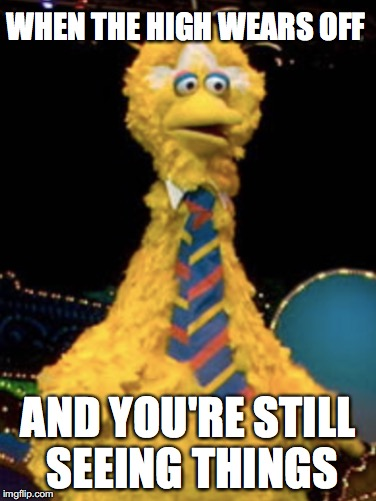 Big B!... Yo... You aight?... | WHEN THE HIGH WEARS OFF AND YOU'RE STILL SEEING THINGS | image tagged in big bird,high | made w/ Imgflip meme maker
