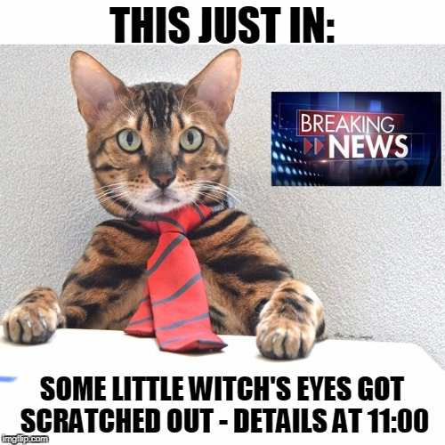 THIS JUST IN: SOME LITTLE WITCH'S EYES GOT SCRATCHED OUT - DETAILS AT 11:00 | made w/ Imgflip meme maker