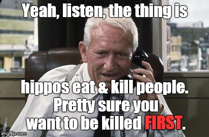 PSA: Hippos kill people, and hippos eat people. Has anyone seen Donna Brazile lately?? | Yeah, listen, the thing is hippos eat & kill people. Pretty sure you want to be killed FIRST. FIRST | image tagged in tracy,yeah listen,hippo,psa,here's the thing,donna brazile | made w/ Imgflip meme maker