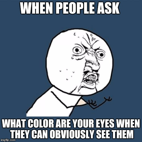 Y U No Meme | WHEN PEOPLE ASK WHAT COLOR ARE YOUR EYES WHEN THEY CAN OBVIOUSLY SEE THEM | image tagged in memes,y u no | made w/ Imgflip meme maker