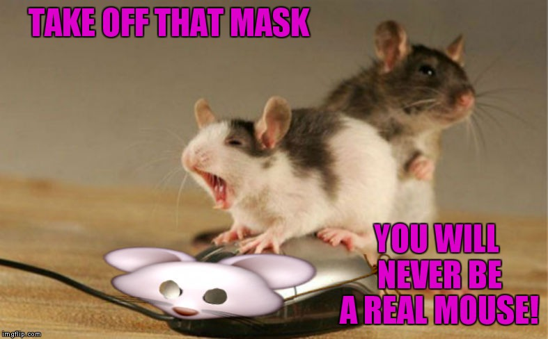I bet McDonald's employee's feel this way... | TAKE OFF THAT MASK YOU WILL NEVER BE A REAL MOUSE! | image tagged in mouse,mouse trap,robots,unmasked | made w/ Imgflip meme maker
