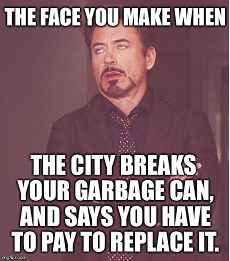 What a load of garbage |  THE FACE YOU MAKE WHEN; THE CITY BREAKS YOUR GARBAGE CAN, AND SAYS YOU HAVE TO PAY TO REPLACE IT. | image tagged in memes,face you make robert downey jr,garbage dump,scumbag government,taxpayer,trash can | made w/ Imgflip meme maker
