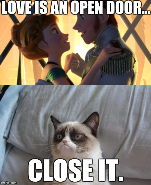 Good advice. | LOVE IS AN OPEN DOOR... CLOSE IT. | image tagged in frozen,grumpy cat,funny,memes | made w/ Imgflip meme maker