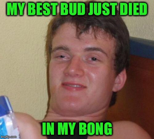 10 Guy Meme | MY BEST BUD JUST DIED IN MY BONG | image tagged in memes,10 guy | made w/ Imgflip meme maker