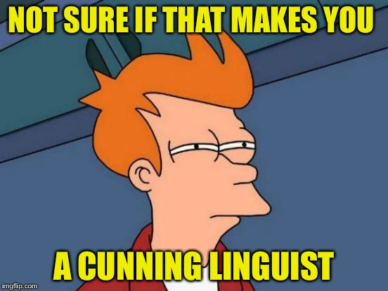 Futurama Fry Meme | NOT SURE IF THAT MAKES YOU A CUNNING LINGUIST | image tagged in memes,futurama fry | made w/ Imgflip meme maker