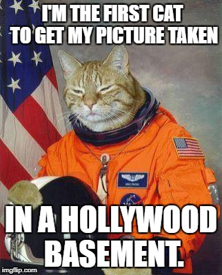 Disappointed Feline |  I'M THE FIRST CAT TO GET MY PICTURE TAKEN; IN A HOLLYWOOD BASEMENT. | image tagged in fe,flat earth,hollywood,moon landing hoax,fake moon landing | made w/ Imgflip meme maker