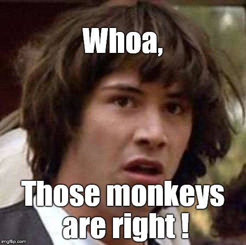 Conspiracy Keanu Meme | Whoa, Those monkeys are right ! | image tagged in memes,conspiracy keanu | made w/ Imgflip meme maker