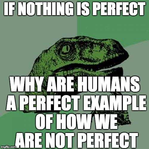 Perfect imperfectness | IF NOTHING IS PERFECT WHY ARE HUMANS A PERFECT EXAMPLE OF HOW WE ARE NOT PERFECT | image tagged in memes,philosoraptor | made w/ Imgflip meme maker