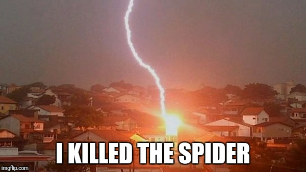 lightning solves everything | I KILLED THE SPIDER | image tagged in spider | made w/ Imgflip meme maker