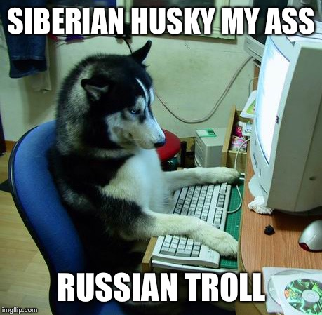 I Have No Idea What I Am Doing Meme | SIBERIAN HUSKY MY ASS RUSSIAN TROLL | image tagged in memes,i have no idea what i am doing | made w/ Imgflip meme maker
