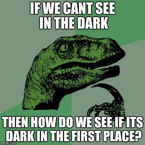 Philosoraptor Meme | IF WE CANT SEE IN THE DARK THEN HOW DO WE SEE IF ITS DARK IN THE FIRST PLACE? | image tagged in memes,philosoraptor | made w/ Imgflip meme maker