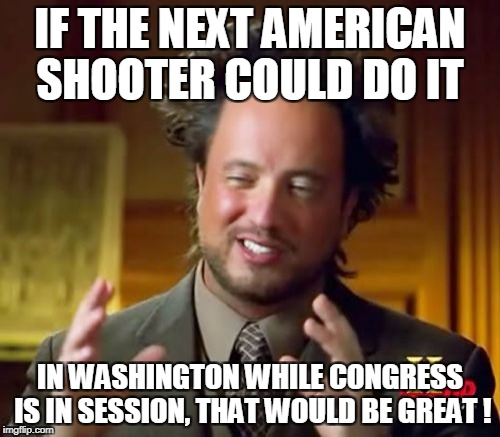 Ancient Aliens | IF THE NEXT AMERICAN SHOOTER COULD DO IT IN WASHINGTON WHILE CONGRESS IS IN SESSION, THAT WOULD BE GREAT ! | image tagged in memes,ancient aliens | made w/ Imgflip meme maker