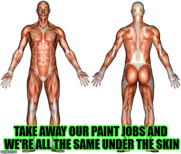 We're all the same | TAKE AWAY OUR PAINT JOBS AND WE'RE ALL THE SAME UNDER THE SKIN | image tagged in we're all the same,humanity,humans,human rights,human,human race | made w/ Imgflip meme maker
