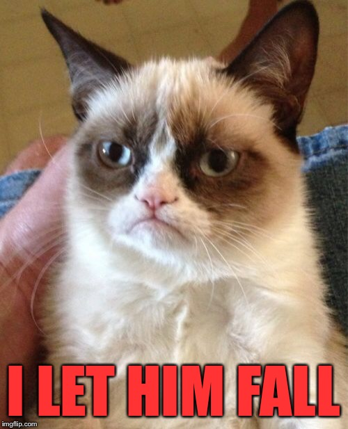 Grumpy Cat Meme | I LET HIM FALL | image tagged in memes,grumpy cat | made w/ Imgflip meme maker