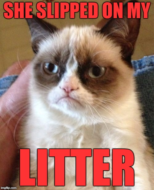 Grumpy Cat Meme | SHE SLIPPED ON MY LITTER | image tagged in memes,grumpy cat | made w/ Imgflip meme maker